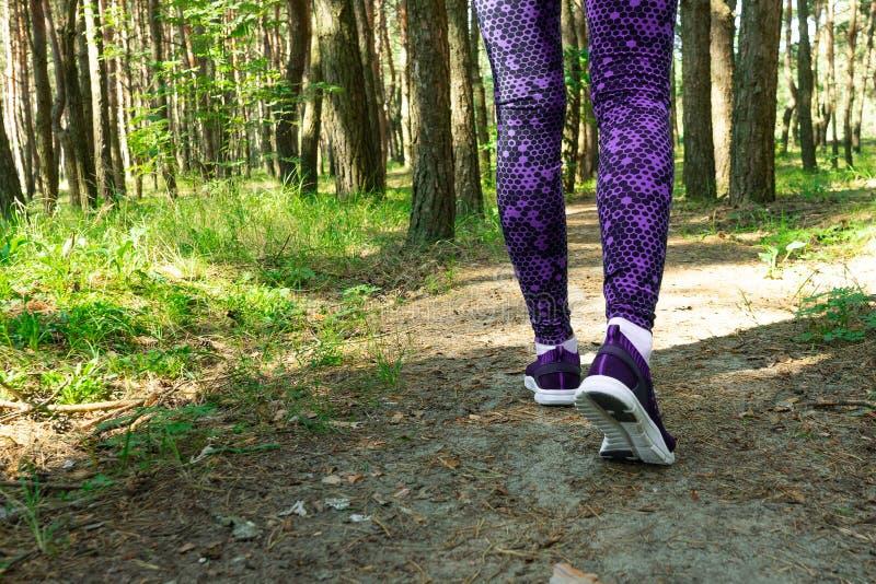 Le giovani gambe del corridore della donna di forma fisica che corrono sulla foresta tropicale di mattina trascinano fotografia stock