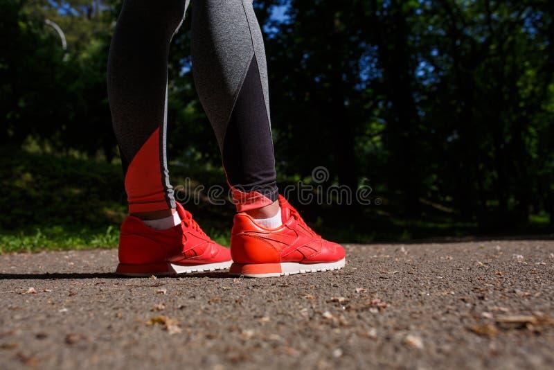 Le giovani gambe della viandante della donna di forma fisica alla foresta trascinano fotografie stock libere da diritti