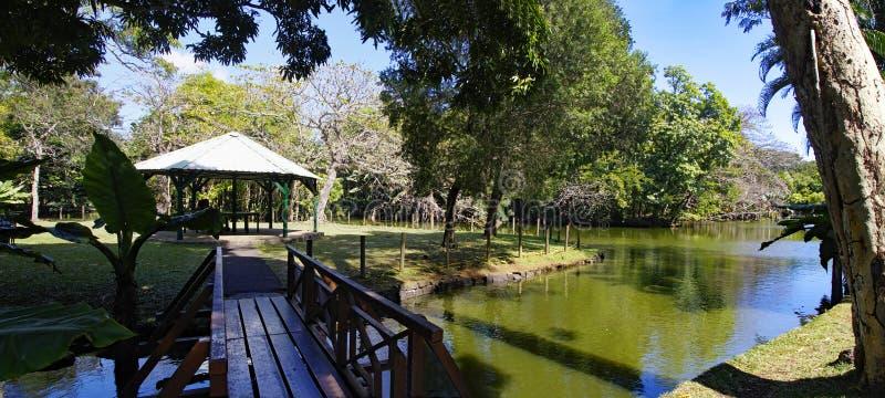Le gloriette dans Sir Seewoosagur Ramgoolam Botanical Garden C'est un touriste populaire photo stock