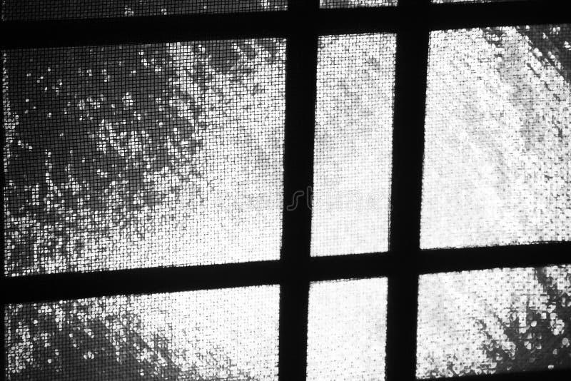 Le gocce di pioggia hanno attaccato sulla zanzariera in una finestra, distorcente una lampadina fuori fotografia stock