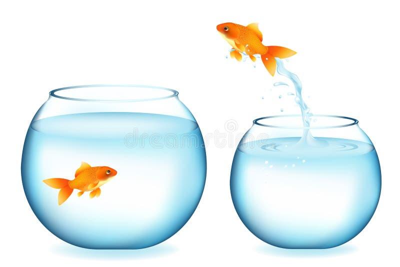 Le Goldfish sautant à l'autre Goldfish. Vecteur illustration libre de droits