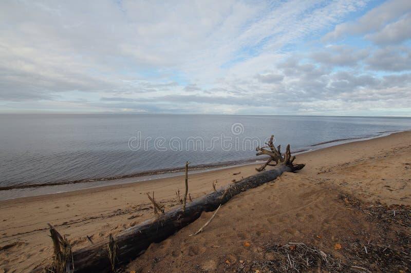 Le Golfe de Riga photo stock