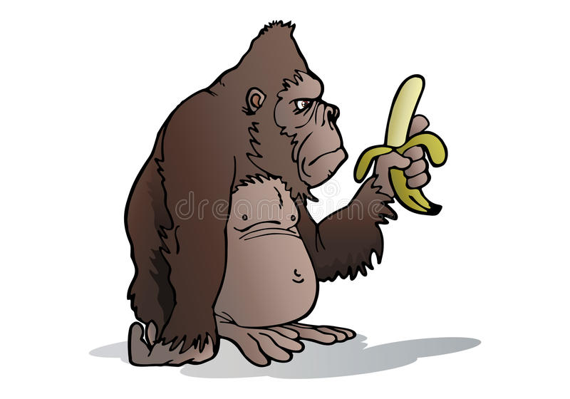 Le Gorille D Argent-en Arrière Mangent La Banane Image stock