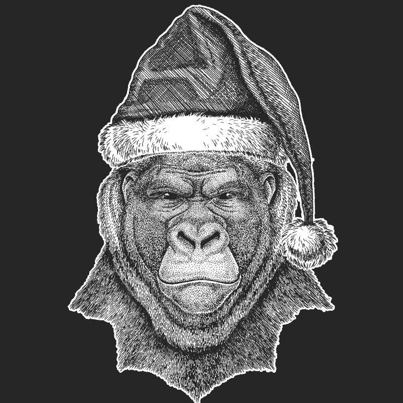 Le gorille, singe, imitent Noël animal terrible, célébration de nouvelle année Chapeau d'hiver de Santa Claus Coiffe de Noël illustration stock
