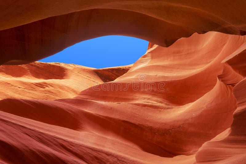 Le grès ondule en canyon inférieur d'antilope images stock