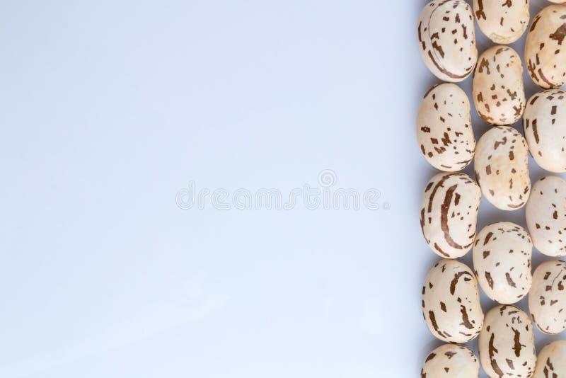Le grand grain brun clair de haricot, cosse de haricot, beaucoup de haricots donnent au tapotement une consistance rugueuse photos stock