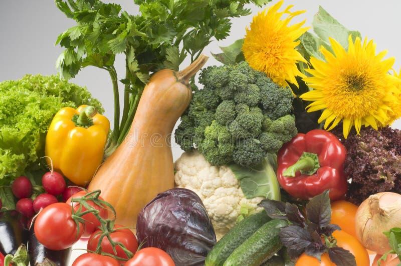 le grand groupe de nourriture objecte le légume images libres de droits