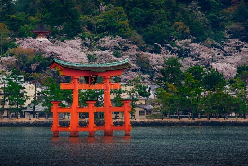 Le grand O-Torii du tombeau d'Itsukushima photo libre de droits