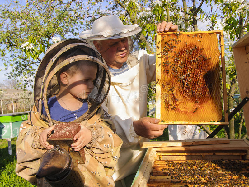 apiculteur 52