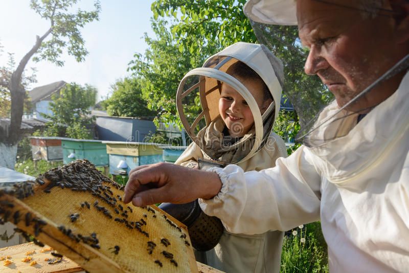 Le grand-père expérimenté d'apiculteur enseigne son petit-fils s'inquiétant des abeilles Apiculture Le concept du transfert de photos libres de droits