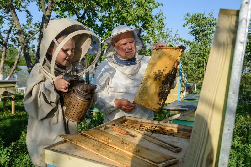 Le grand-père expérimenté d'apiculteur enseigne son petit-fils s'inquiétant des abeilles Apiculture Le concept du transfert de images stock