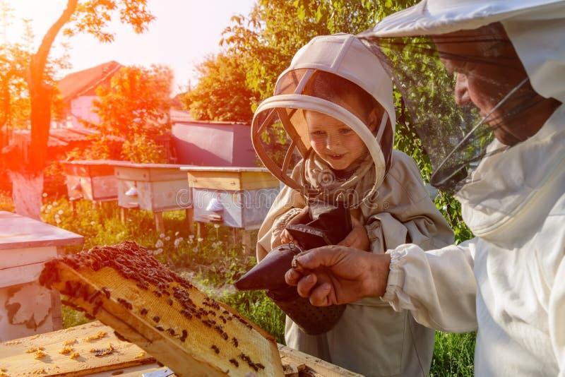 Le grand-père expérimenté d'apiculteur enseigne son petit-fils s'inquiétant des abeilles Apiculture Le concept du transfert de photo stock