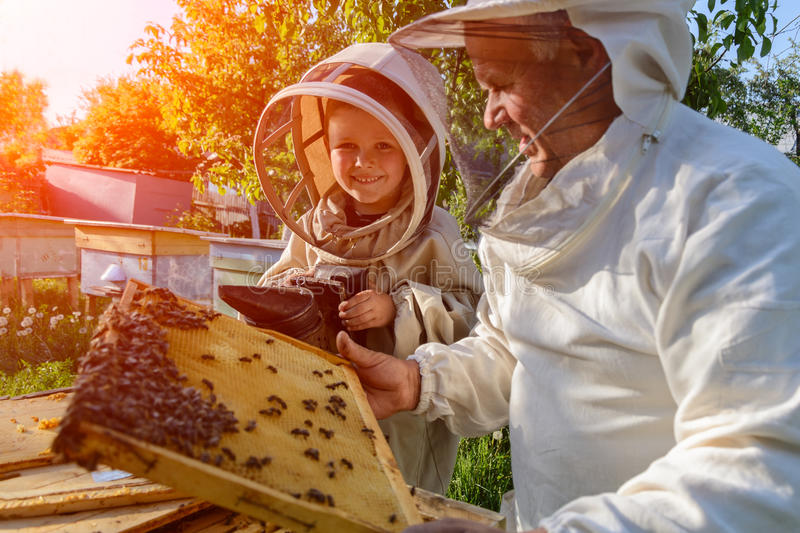 Le grand-père expérimenté d'apiculteur enseigne son petit-fils s'inquiétant des abeilles Apiculture Le transfert de l'expérience photographie stock