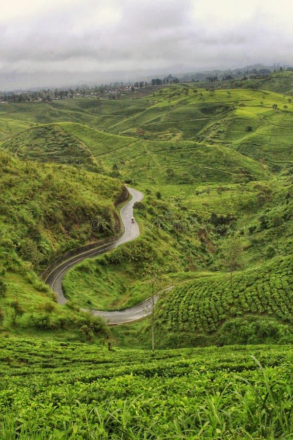 Le grand Pangalengan, Java occidental photos libres de droits
