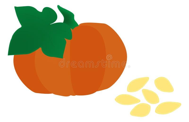 Le grand potiron orange sur un fond blanc avec des feuilles et des graines illustration de vecteur