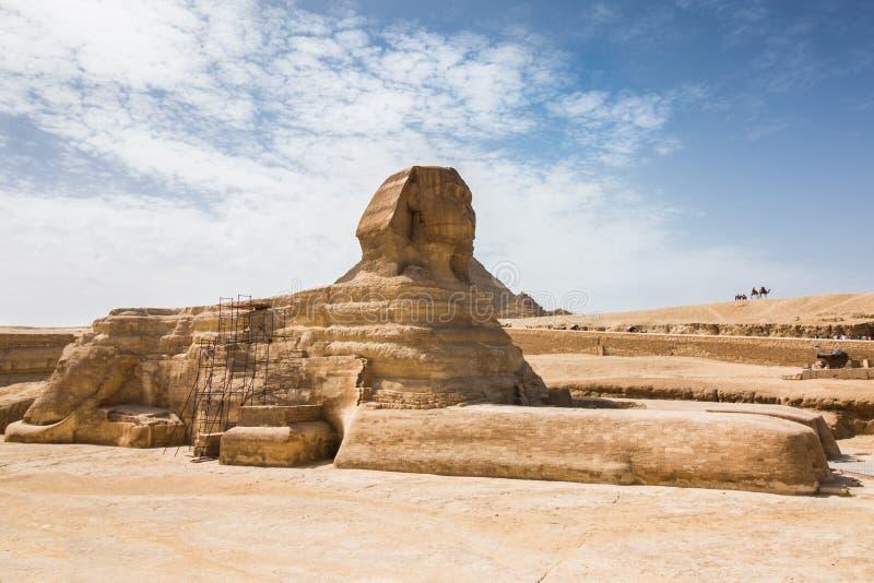 Le grand sphinx de Gizeh du côté images libres de droits