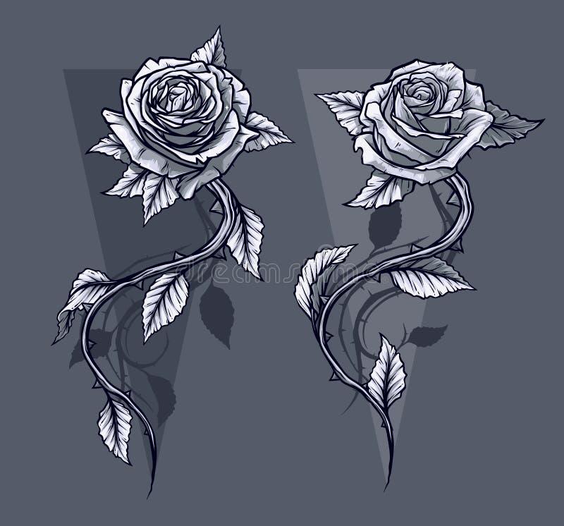 Le graphique a détaillé les roses graphiques avec l'ensemble de tige illustration libre de droits