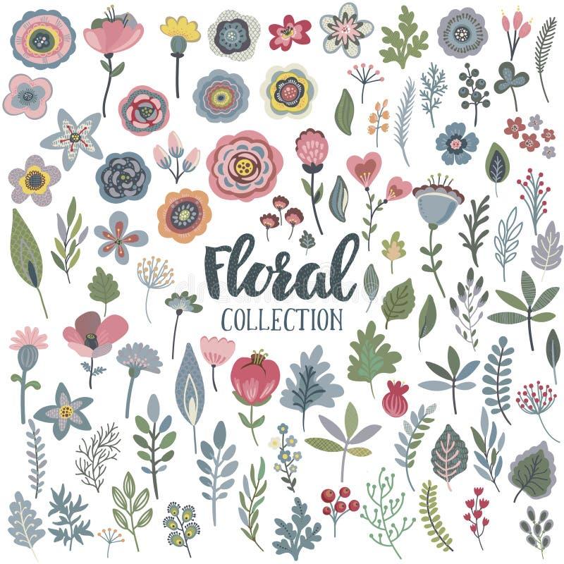 Le graphique de vecteur a placé avec de belles fleurs, feuilles, branches, baies illustration stock