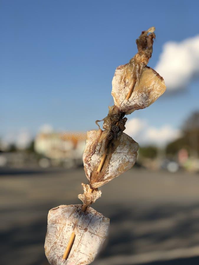 Le gril thaïlandais de nourriture de rue a séché le casse-croûte délicieux de calmar photo stock