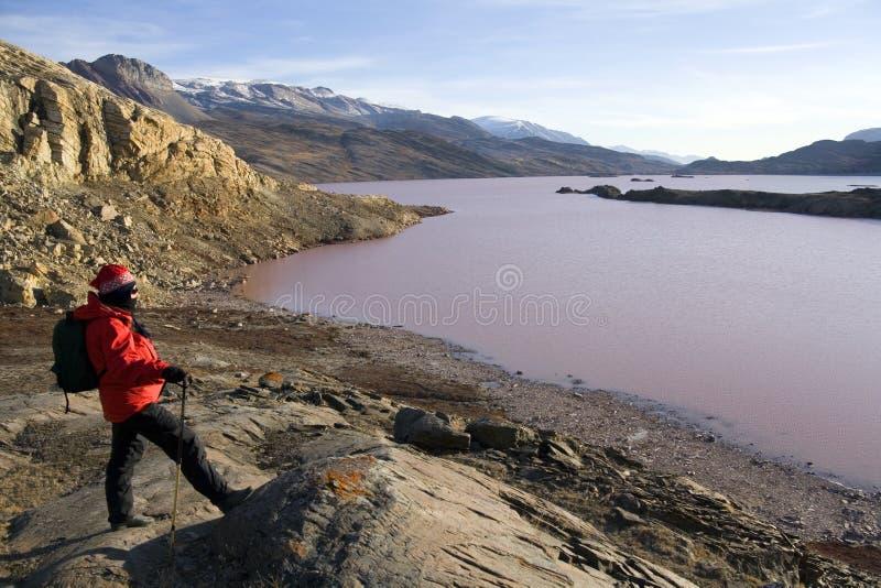 Le Groenland - le lac Noa - fjord de Franz Joseph photos stock