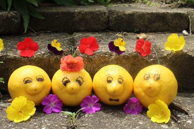 Le groupe de citrons heureux et souriants enlèvent du temps tandis que des vacances de poser pour la caméra photographie stock