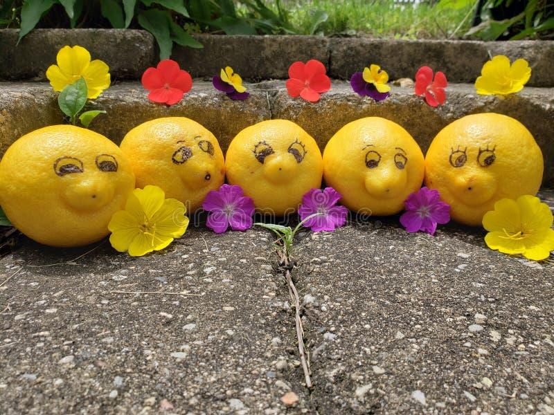 Le groupe de citrons heureux et souriants enlèvent du temps tandis que des vacances de poser pour la caméra photographie stock libre de droits