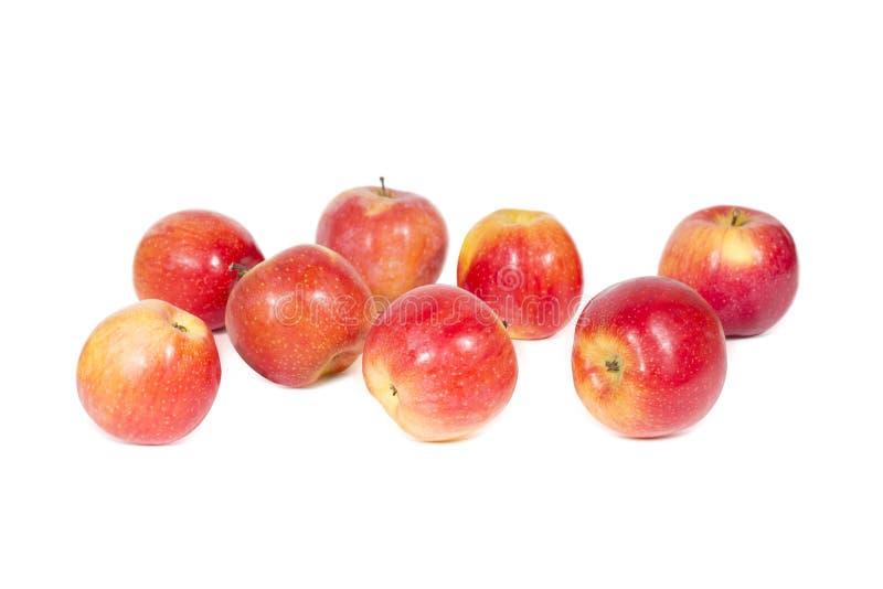 Le groupe de la pomme rouge fraîche porte des fruits blanc d'isolement image libre de droits
