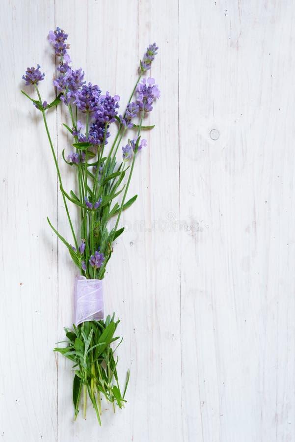 Le groupe de lavande de floraison s'embranche sur un Ba en bois peint par blanc image stock