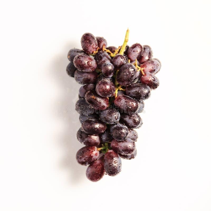 Le groupe de raisins rouges avec de l'eau chute sur le fond clair images libres de droits