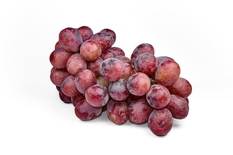Le groupe de raisins rouges, frais avec de l'eau chute Sur le fond blanc photographie stock