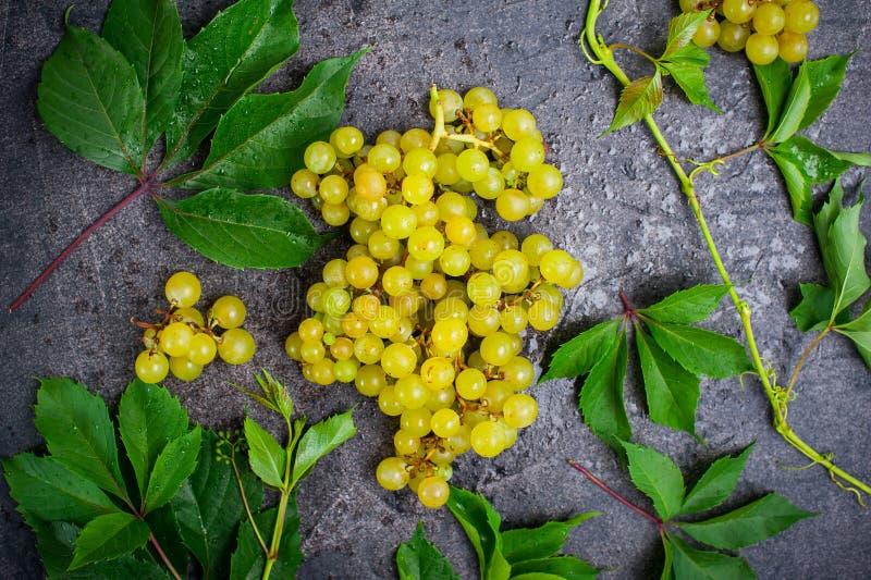 Le groupe de vue supérieure de raisins blancs et de vert part avec des baisses de l'eau sur le fond concret foncé Foyer sélectif images stock