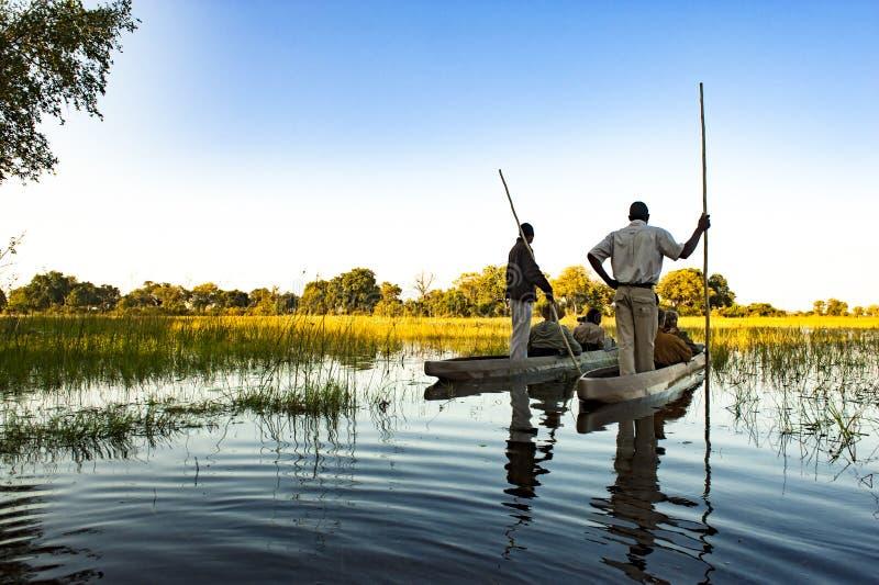 Le guide che fanno Okavango scattano con la canoa di riparo nel Botswana immagini stock libere da diritti
