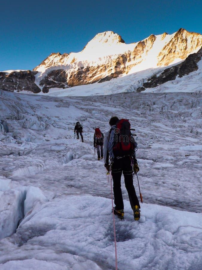 Le guide de montagne mène ses clients au-dessus d'un glacier sur leur chemin à un haut sommet alpin après qu'un début de début de photos libres de droits
