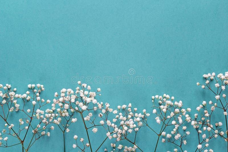 Le Gypsophila fleurit le cadre sur le fond bleu d'en haut Configuration plate photos stock