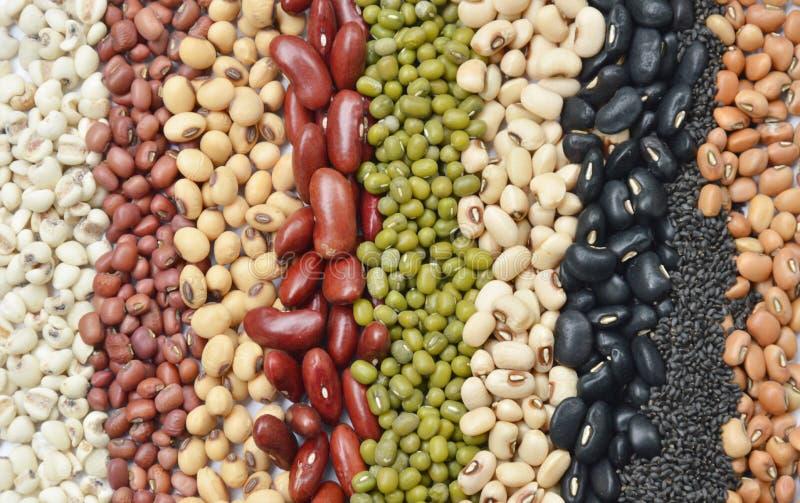 Le haricot et la céréale crus de variété plantent la texture et le fond photos stock