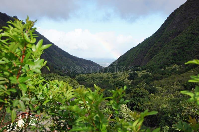 Le Hawai, Stati Uniti d'America fotografia stock