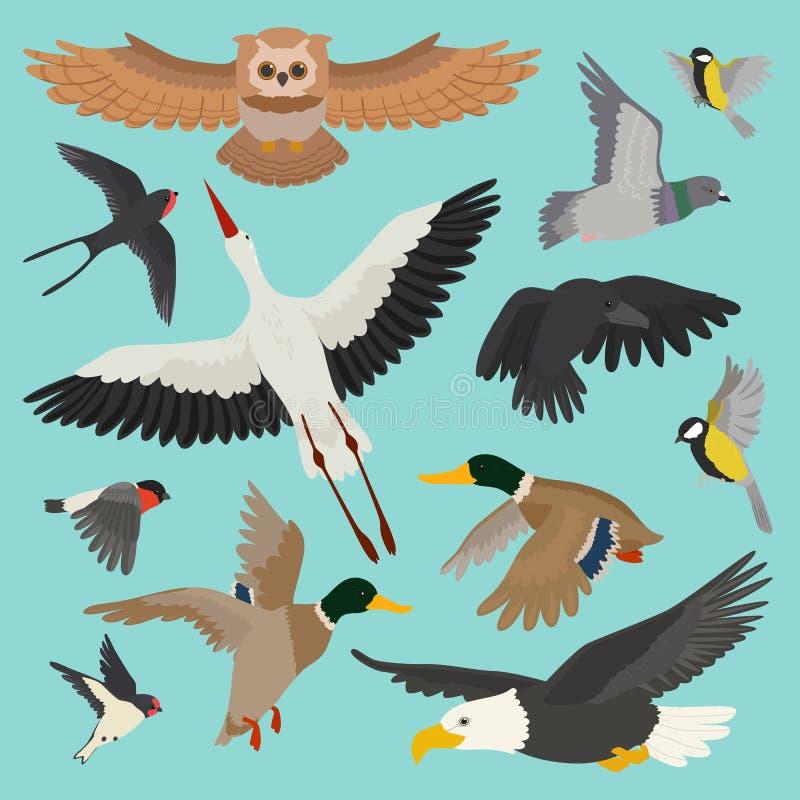 Le hibou de birdie de vol de bande dessinée de vecteur d'oiseau a plongé et canard avec la cigogne ou l'hirondelle réglée de bouv illustration libre de droits