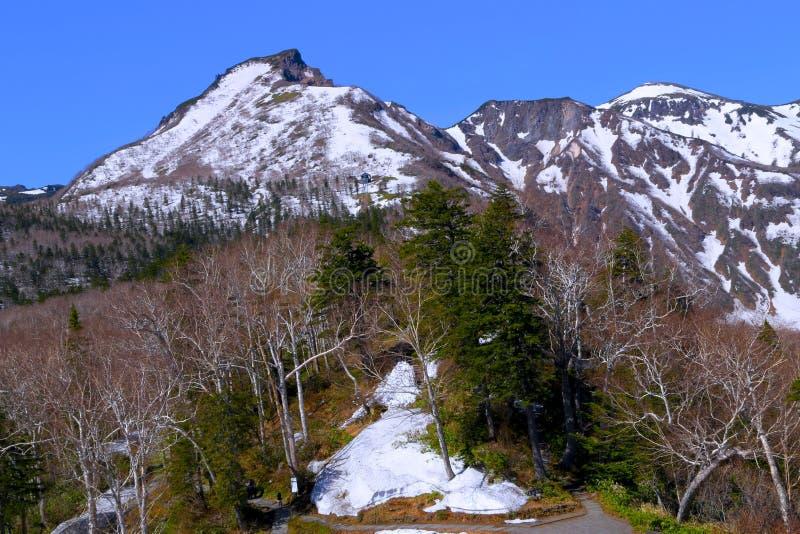 Le Hokkaido, Japon photo libre de droits