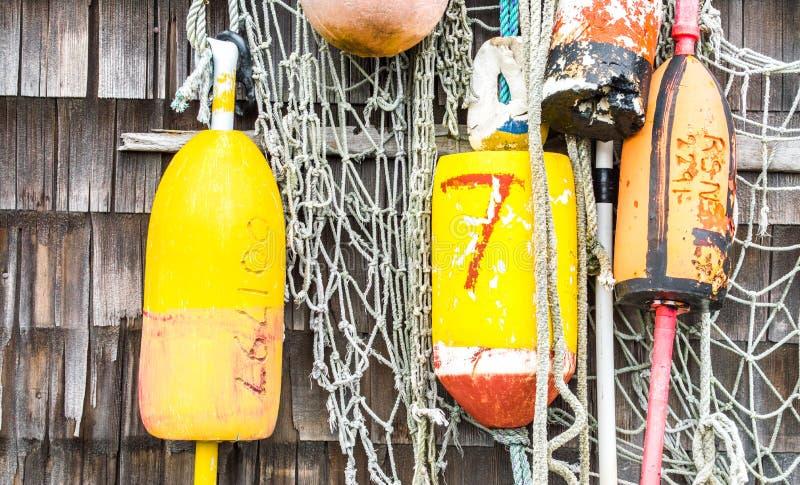 Le homard coloré maintient à flot accrocher sur un mur superficiel par les agents dans le Massachusetts photos libres de droits