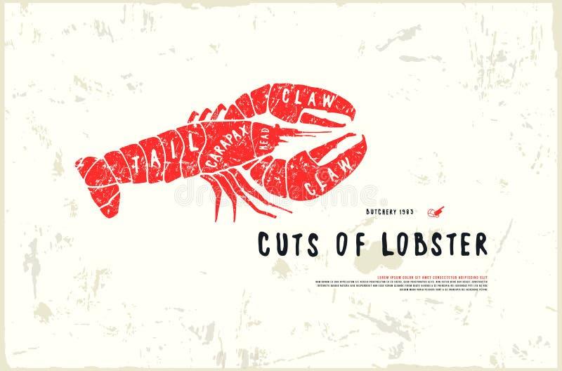 Le homard courant de vecteur coupe le diagramme dans le style du graphique fait main illustration stock