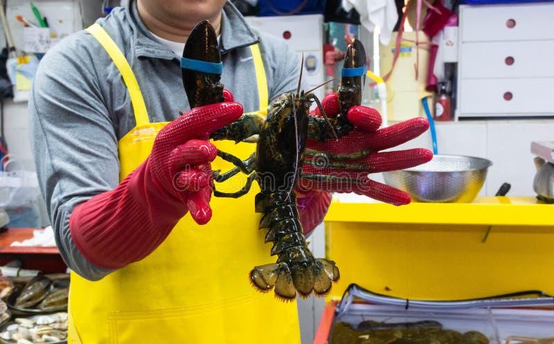 Le homard vivant au marché local aux poissons photographie stock libre de droits