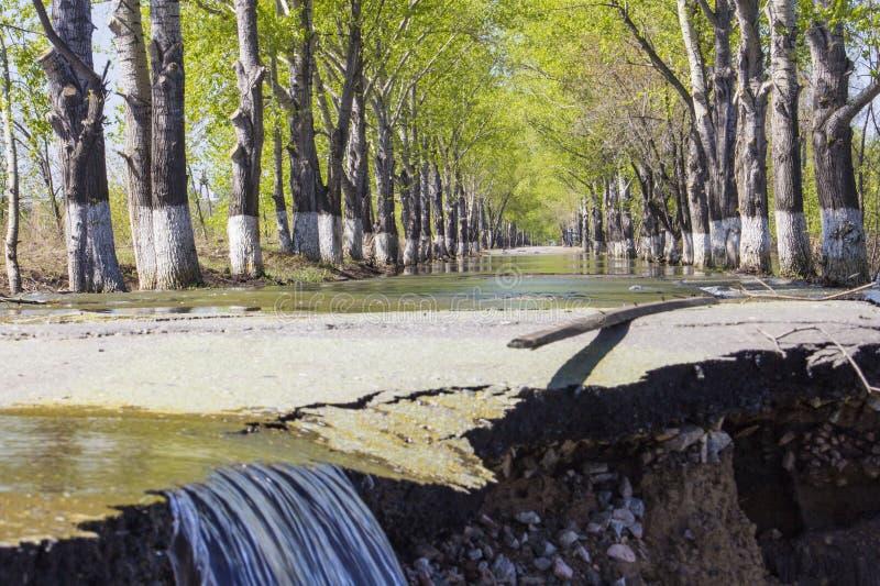 Le inondazioni hanno sommerso una via Sommergendosi su una strada immagine stock libera da diritti