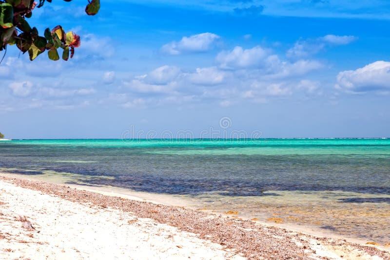 Le Isole Cayman fotografia stock libera da diritti