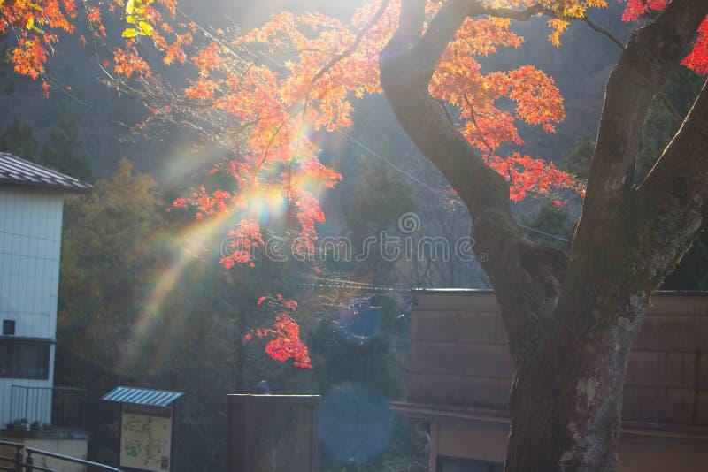 LE JAPON GUNMA photographie stock