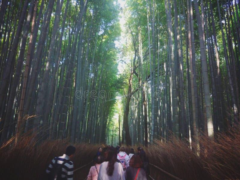 Le Japon Kyoto 4 image libre de droits