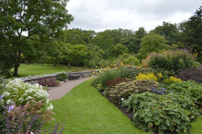 Le jardin - 4 photos libres de droits