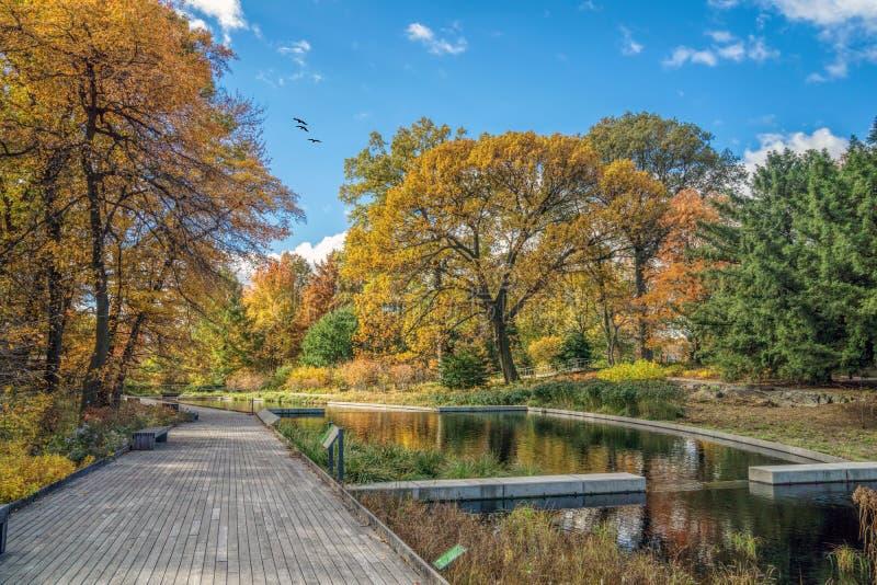 Le jardin botanique de New York image libre de droits