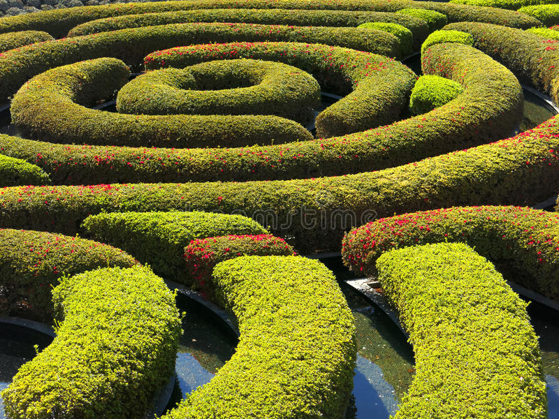 Le jardin central au centre de Getty photographie stock libre de droits