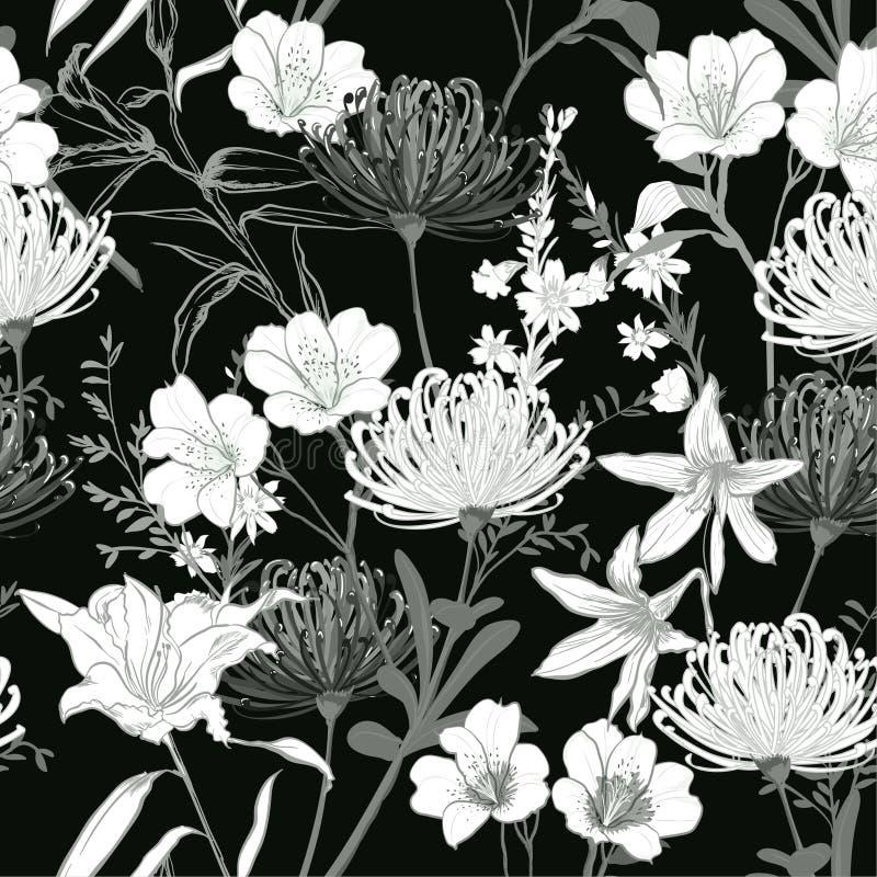 Le jardin de floraison botanique arrière et blanc monotone fleurit l'unfin illustration de vecteur