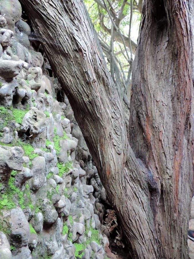 Le jardin de roche de Chandigarh, Inde photos libres de droits